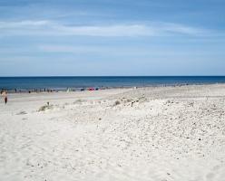 Gdyńskie akwarium – oferta skierowana do turystów w każdym wieku